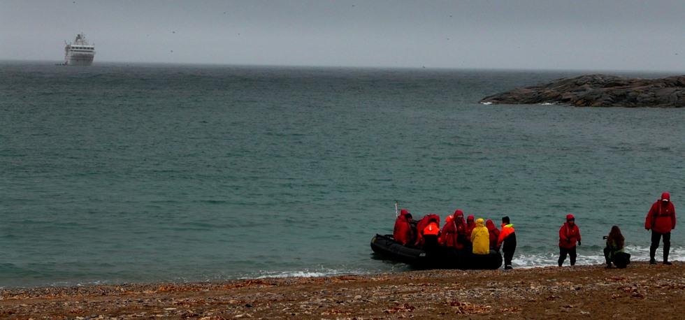 Arctic ecotourism